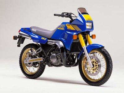 TDR 250 '88